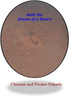 Amid the Dream of a Desert by Cheman and Swatee Sripada