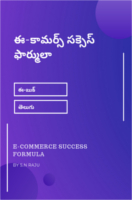 E Commerce Success Formula by S.N.Raju